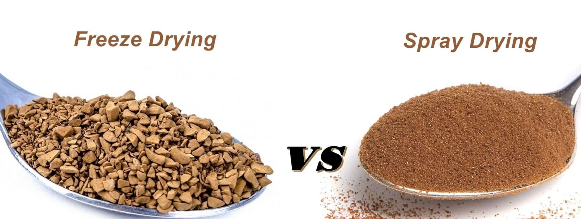 Spray Drying vs Freeze Drying